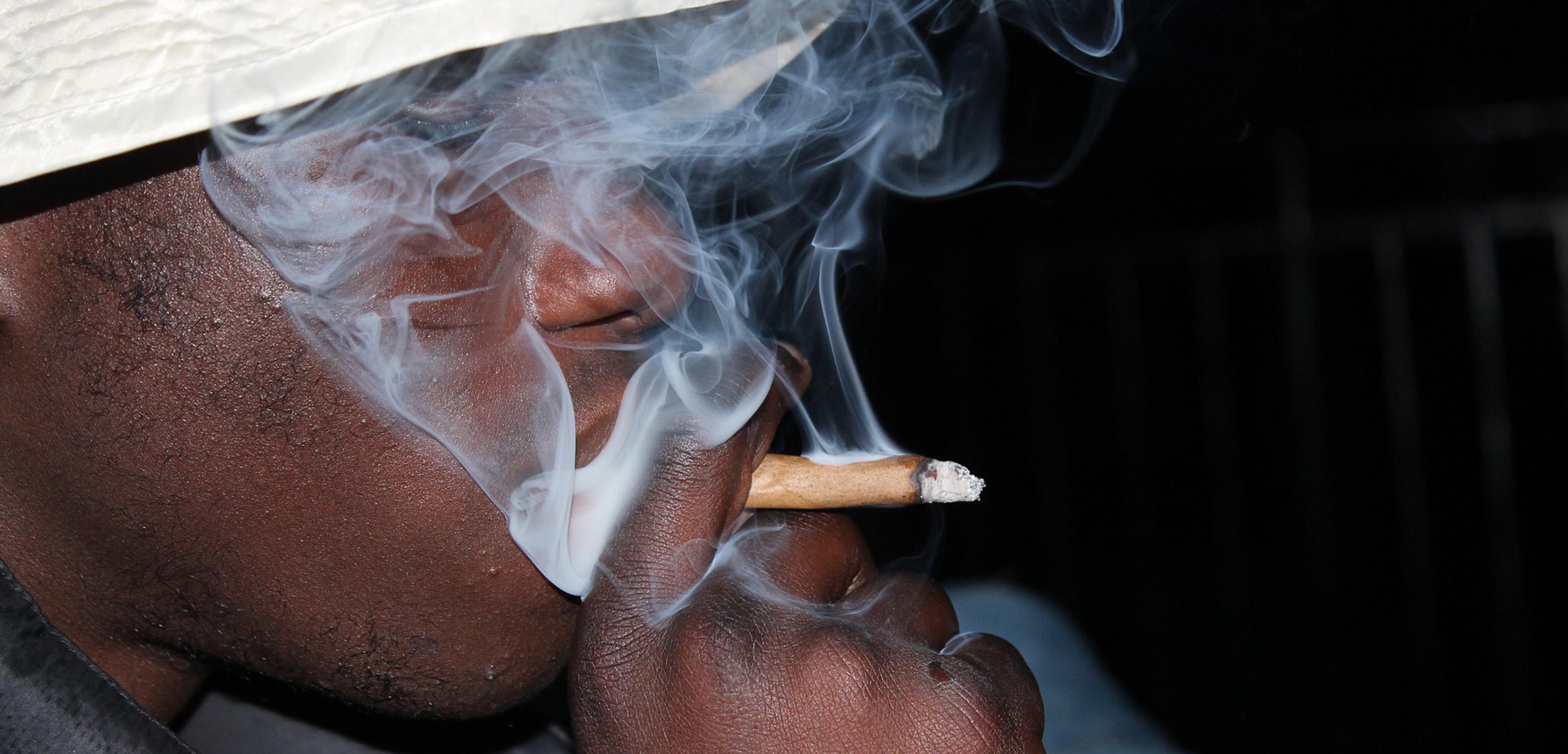 Марихуану курит человек или нет порох с коноплей